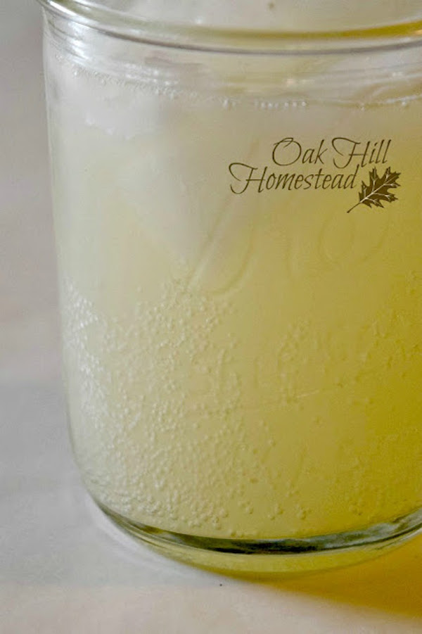 Ginger ale by Oak Hill Homestead